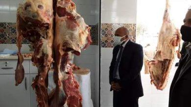Photo of افتتاح منفذ بيع اللحوم رقم 2 الخاص بمديرية الزراعة بأسوان