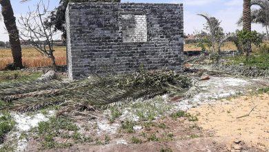Photo of زراعة ابشواى: إزالة تعدي بالبناء خارج الحيز العمراني بالعجميين