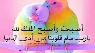 Photo of راحة البال