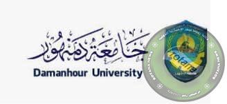 Photo of جامعة دمنهور تحصل على مركز متقدم ضمن أبرز التصنيفات العالمية