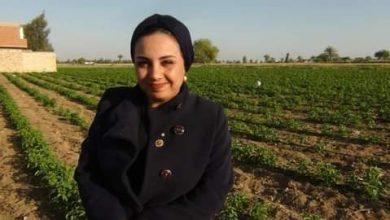 Photo of لجنة البيئة بروتاري التحرير تشارك في الحملة الرئاسية للتحول من الري بالغمر للري الحديث