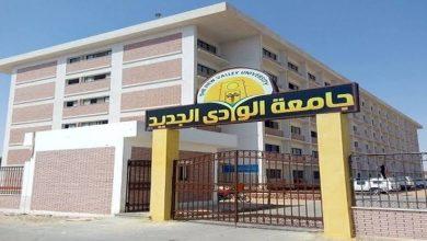 Photo of جامعة الوادي الجديد تقرر إقامة برنامج تدريبي للقيادات الجامعية