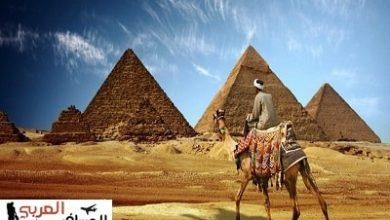 Photo of قصيدة من ديوان الفصحى الإلكتروني إنها مصر ياسادة