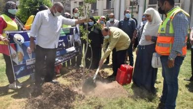 Photo of محافظ أسيوط يغرس بعض الاشجار ضمن فعاليات يوم البيئة العالمى