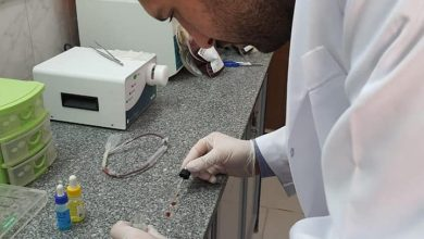 Photo of بدأ التدريب العملي للصيادلة الجدد على اعمال بنوك الدم بالدقهلية