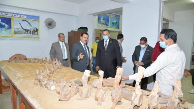Photo of جامعة الوادى الجديد تستقبل وفد قطاع العلوم الأساسية وأكاديمية البحث العلمي