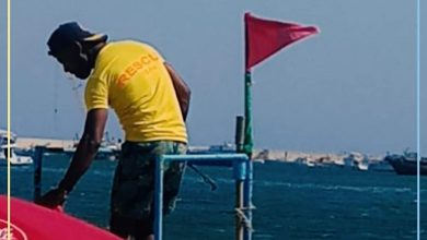 Photo of موجز نشرة أخبار محافظة الإسكندرية