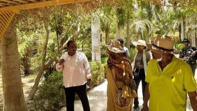 Photo of الزراعة : الحديقة النباتية في أسوان تستقبل وزيرة الخارجية السودانية
