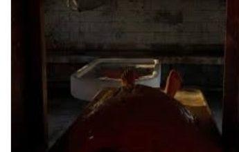 Photo of تفاصيل جديدة في جريمة حادث مقتل فتاة على يد صديقتها وزوجها وتقطيع جثتها