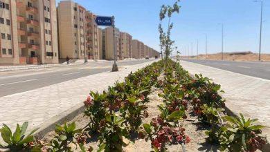Photo of الانتهاء من تنفيذ طريق شرق الواحة.. والتجهيز لتسليم قطع أراضي الإسكان المميز
